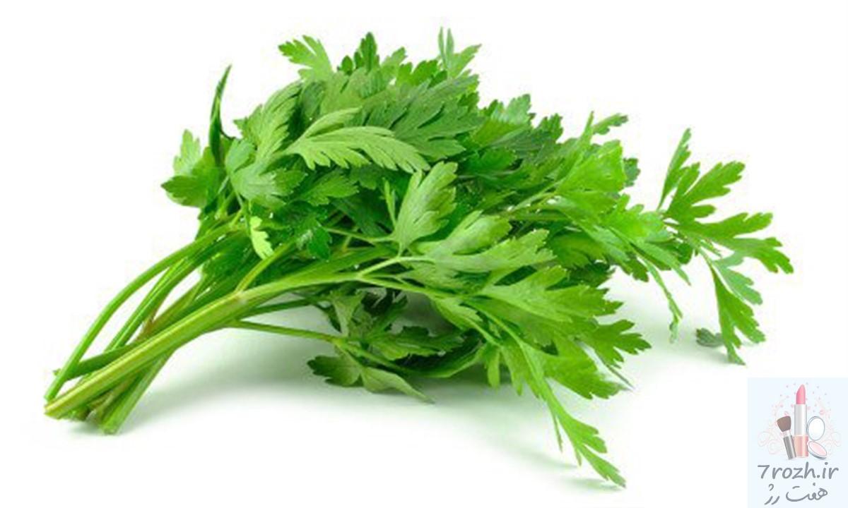 چند گیاه برای افزایش رشد مو